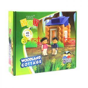 بازی-فکری-woodland
